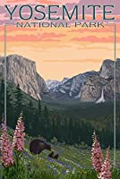 Bears and Spring Flowers – ヨセミテ国立公園、カリフォルニア 12 x 18 Signed Art Print LANT-44578-708