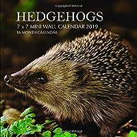 Hedgehogs 7 x 7 Mini Wall Calendar 2019: 16 Month Calendar