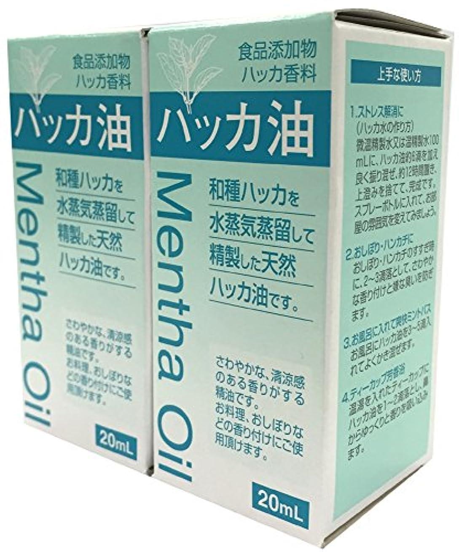 経験的来て有効化食品添加物 ハッカ油 20mL 2個セット