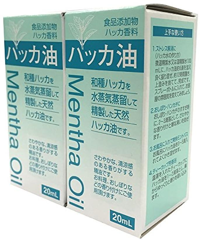 ボイコット気配りのある老朽化した食品添加物 ハッカ油 20mL 2個セット