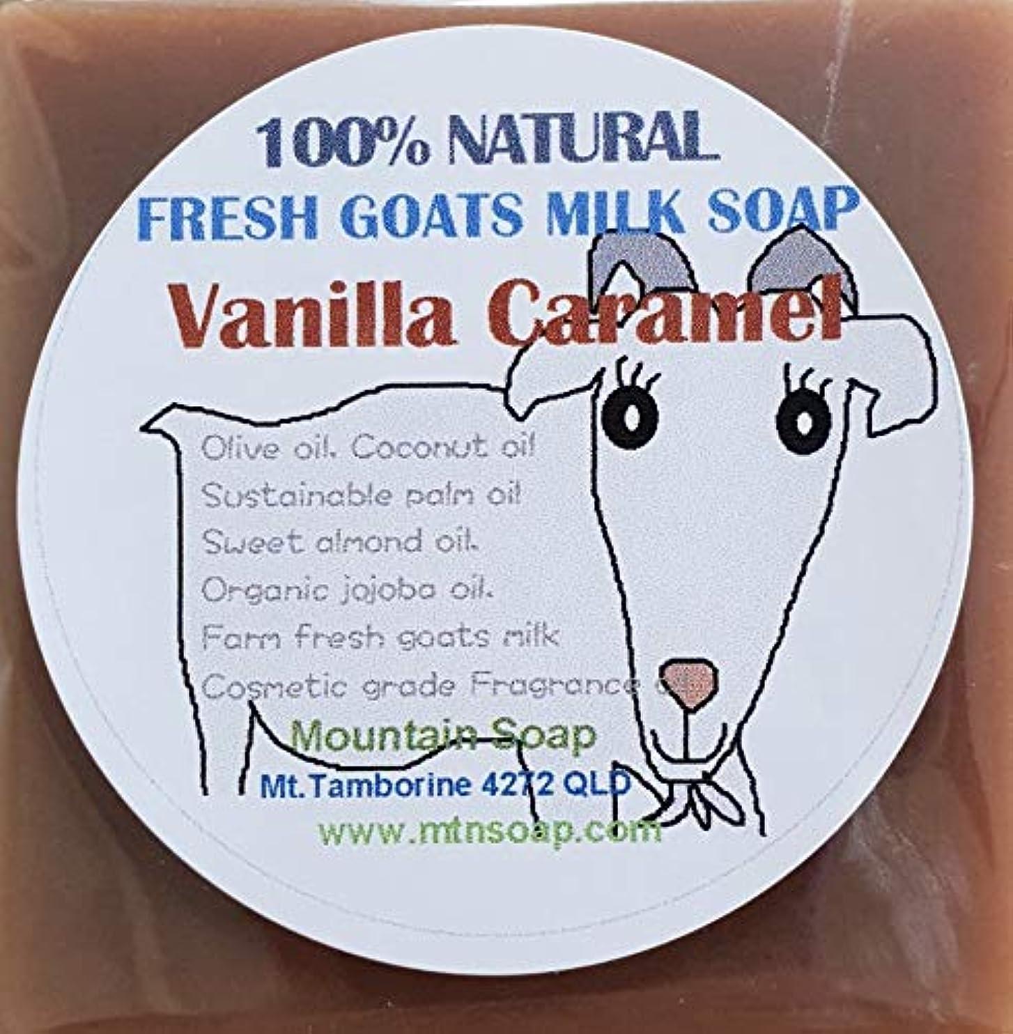 蜂もっともらしい悔い改め【Mountain Soap】農場直送絞りたてゴートミルク生乳使用 ゴートミルク石鹸 バニラキャラメル