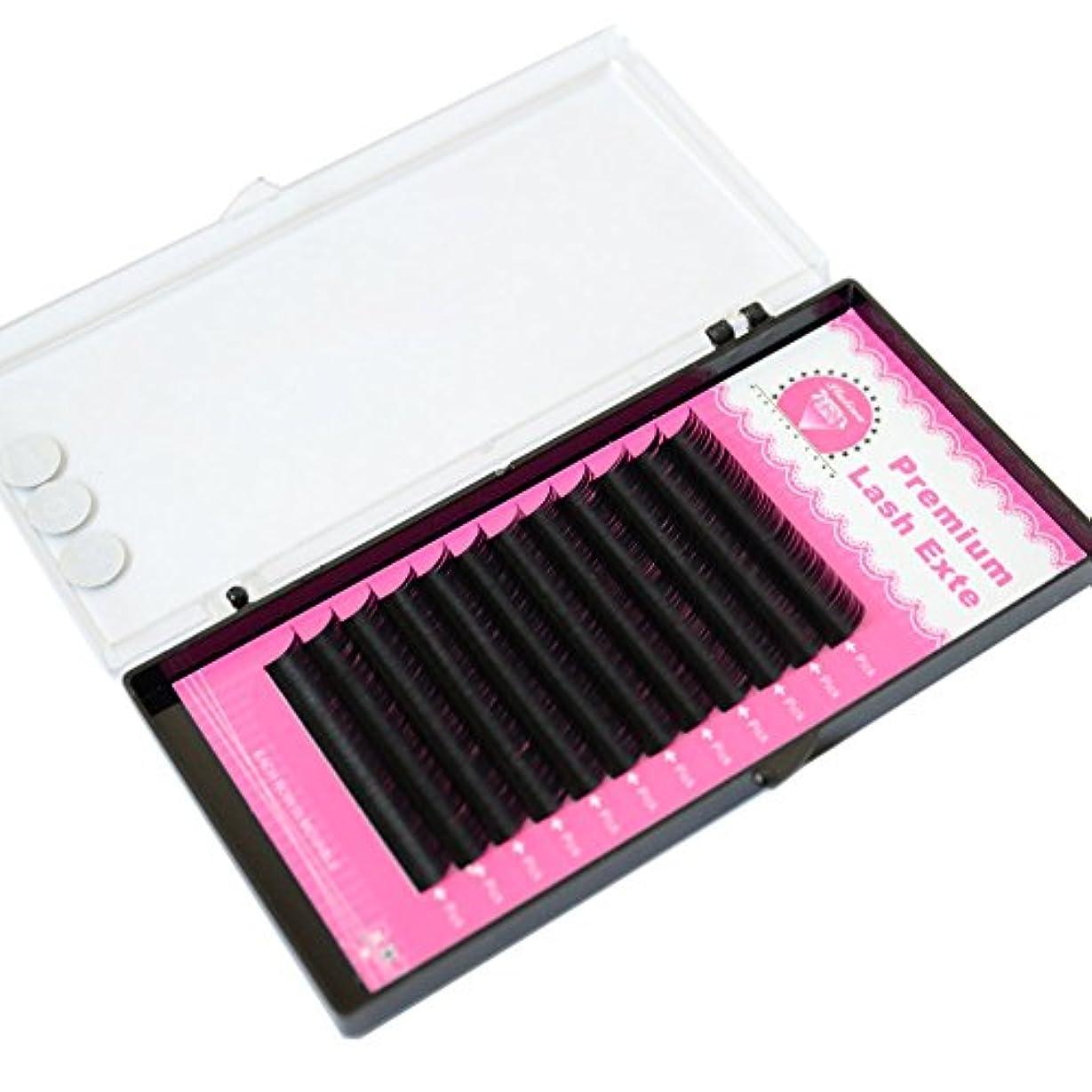 仮装結晶ビールPLATINA LASH セーブルまつげエクステ Dカール 0.10太さ 8mm シングル(長さ指定) 12列【約3400本】マツエク (D 0.10 8mm)