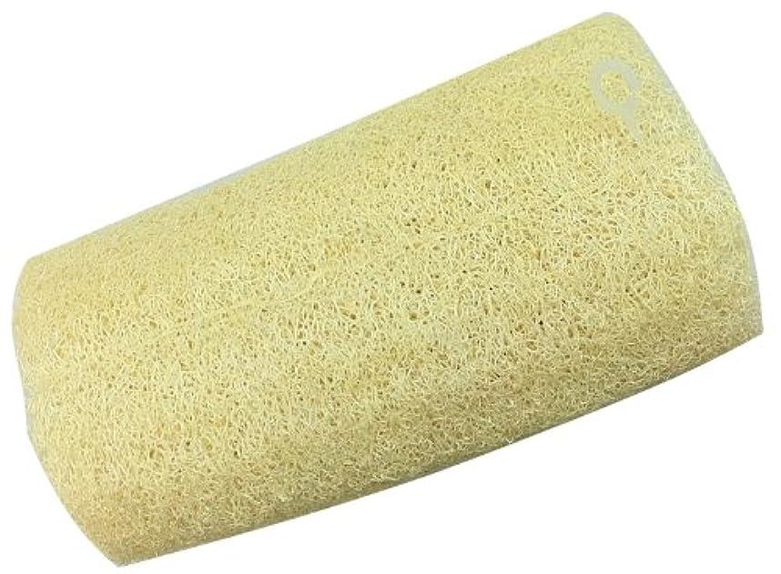 イヤホン考えるプットイシミズ ボディブラシ 天然ヘチマ 20cm 00837