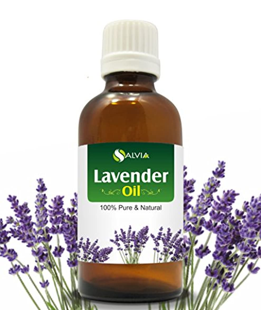 識別ゲスト深さLAVENDER OIL 100% NATURAL PURE UNDILUTED UNCUT ESSENTIAL OIL 30ML