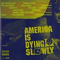 America Is Dying Slowly by Various Artists