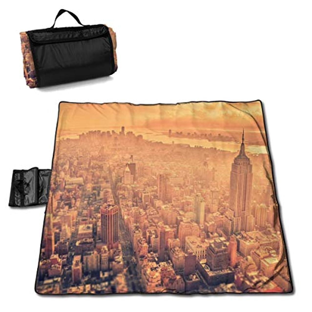 モック毛皮いわゆるVvdsfsaaaレジャーシート ニューヨーク ピクニックマット防水 携帯便利 150×145cm 2~6人用