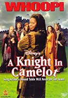 KNIGHT IN CAMELOT