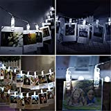 EchoSari 20 LED Photo Clips String Lights, Battery Powered Fairy Twinkle Decorative Lights for Bedroom, Patio, Garden, Yard, Wedding Party, Home Photo Clips, Indoor Outdoor-- Cool White