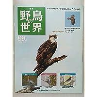 週刊  野鳥の世界 99 ギャラリー:ミサゴ カワセミ 裏磐梯五色沼周辺