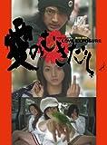 愛のむきだし[DVD]