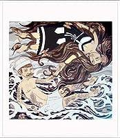 ポスター エバン ハリス barnacles & butterflies 額装品 アルミ製ベーシックフレーム(ホワイト)