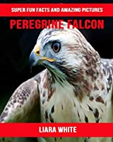 Peregrine Falcon: Super Fun Facts And Amazing Pictures