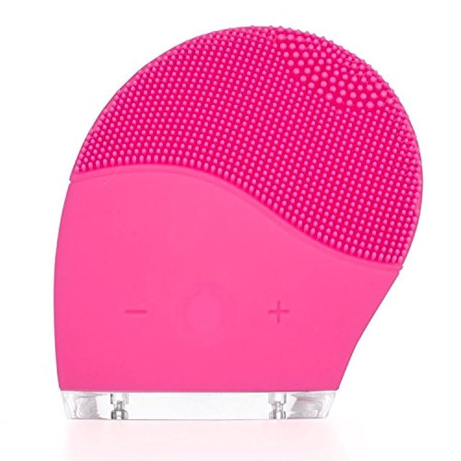 親密な前兆保険Dazers 音波洗顔 電動 洗顔ブラシ 高級シリコン クレンジング 洗顔器 防水 充電式 毛穴ケア スピード調節でき 顔部マッサージ (ローズピンク) プレゼント
