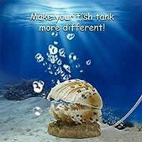 ボクテック (boxtech) 水族館のペットのおもちゃの装飾 真珠貝