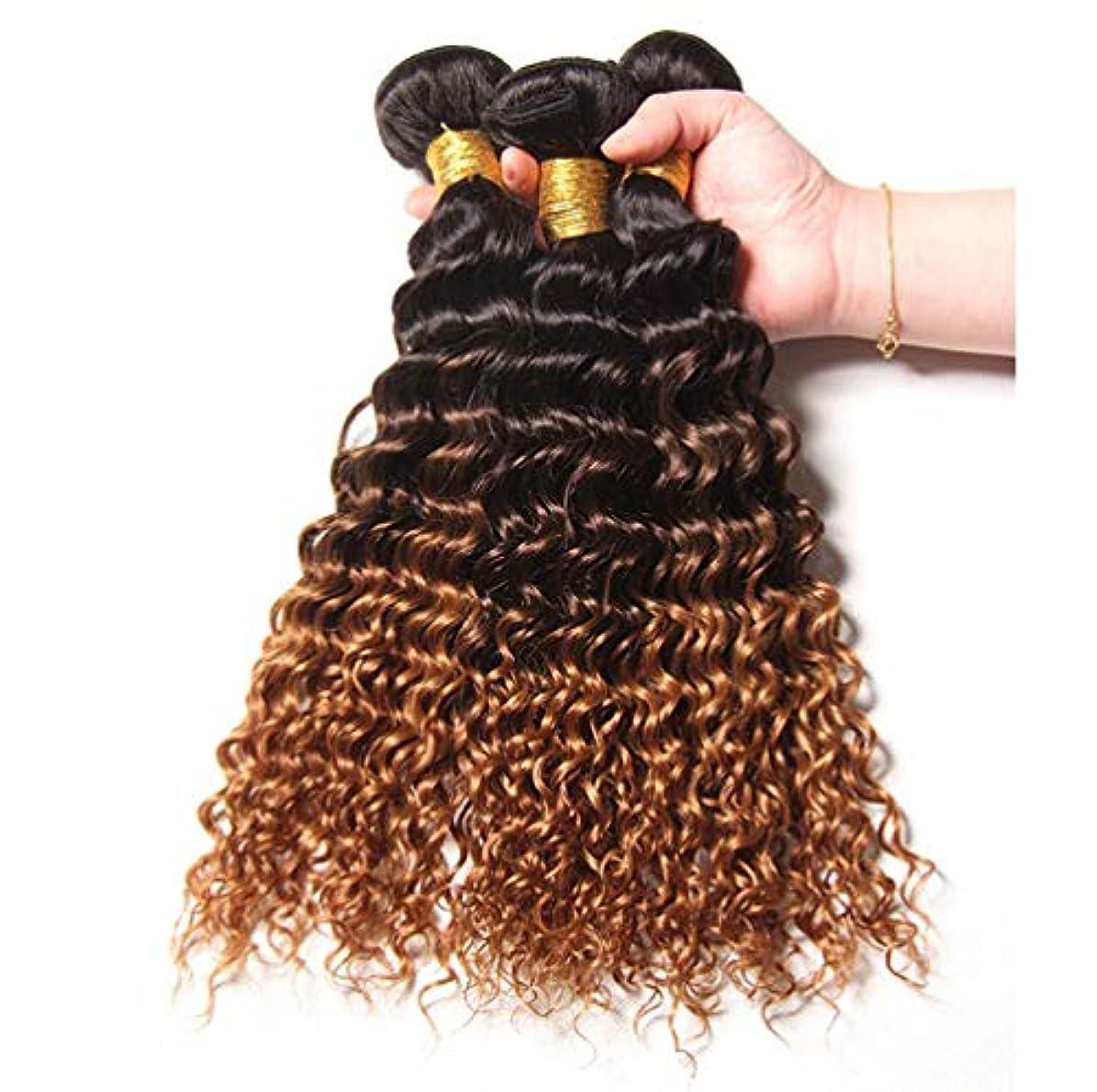 ブラジルの人間の髪の毛の織りの巻き毛の束オンブルの巻き毛の束人間の髪の毛の束深い巻き毛(3束)