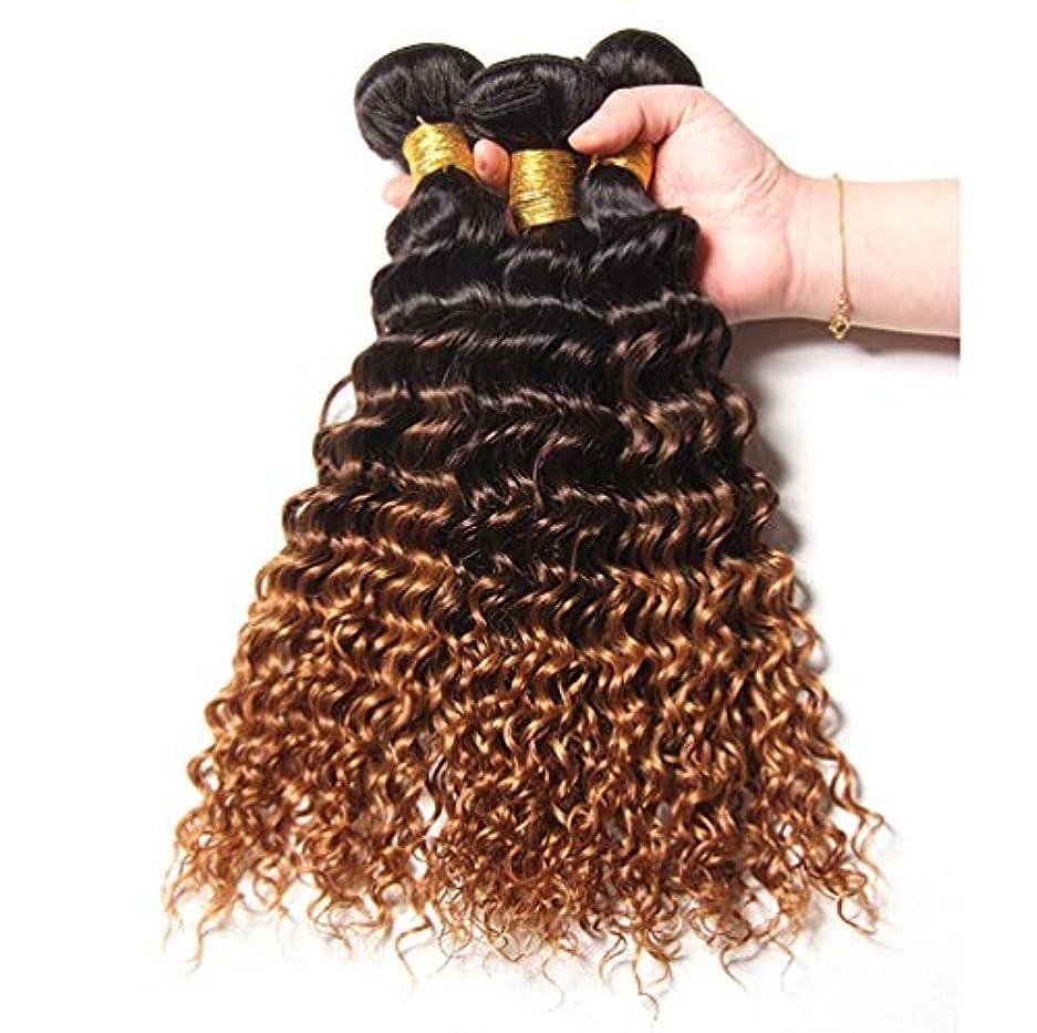 ゲームみがきます延期するブラジルの人間の髪の毛の織りの巻き毛の束オンブルの巻き毛の束人間の髪の毛の束深い巻き毛(3束)