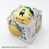 熊本県産 JAやつしろ 晩白柚 ばんぺいゆ 風のいたずら 大玉 Lサイズ 1玉(約1.5kg)