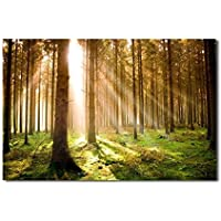 レモンツリーART 自然 風景画 田園 植物 木 森 ポスター 写真 ポスターアート インテリア装飾品 壁飾り 壁掛け絵画 部屋飾り、新築お祝いに最適(90x60cmx1枚)