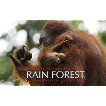 熱帯雨林 Rain Forest--Hidden Paradise in Borneo