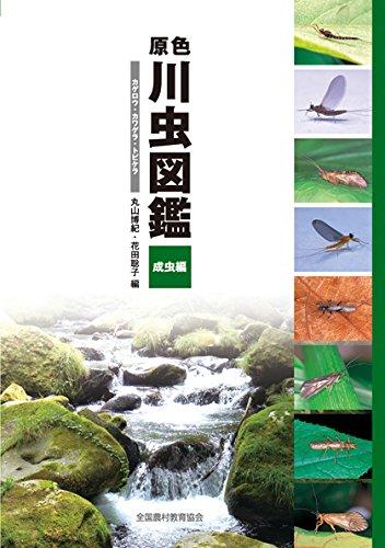 原色川虫図鑑 成虫編: カゲロウ・カワゲラ・トビケラ