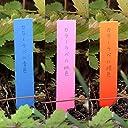 ゴールドカラーラベル1.2×9cm 3色(青 桃 橙)300枚 鉛筆で書ける植物用品種ラベル