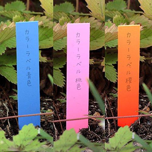 ゴールドカラーラベル1.2×9cm 3色(青・桃・橙)300枚[鉛筆で書ける植物用品種ラベル]