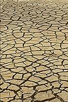 Journal: Cracked Mud