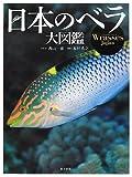 日本のベラ大図鑑 画像