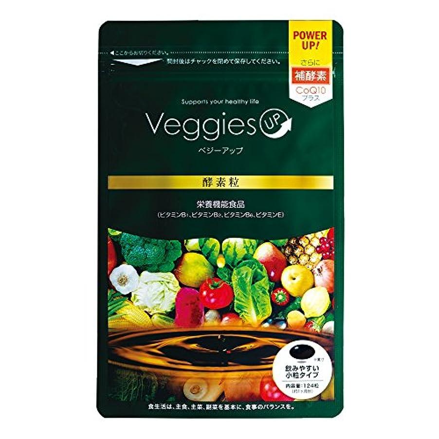 神の無駄なヘッジベジーアップ酵素粒 124粒 ダイエット ダイエットサプリ 酵素サプリ 酵素ダイエット コエンザイムQ10 健康