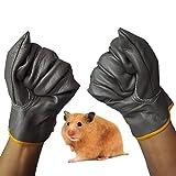 ペットアンチBiteグローブ、携帯型ハムスター&スモールペットDan 5指保護グローブ???デザイン グレイ