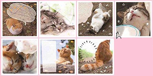 猫にゃん メッセージシールガム 20個入りBOX(食玩)
