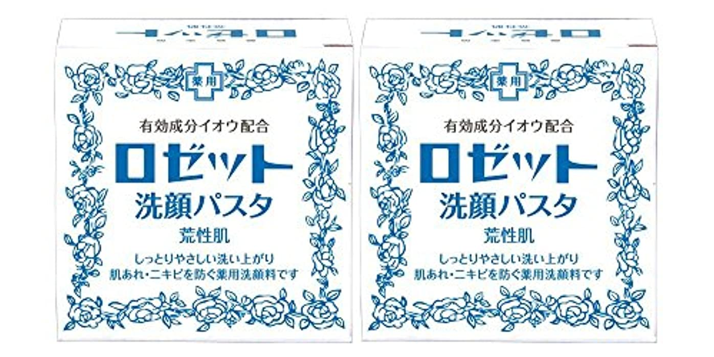 使用法アパルルーチンロゼット洗顔パスタ 荒性肌 90g×2個パック (医薬部外品)