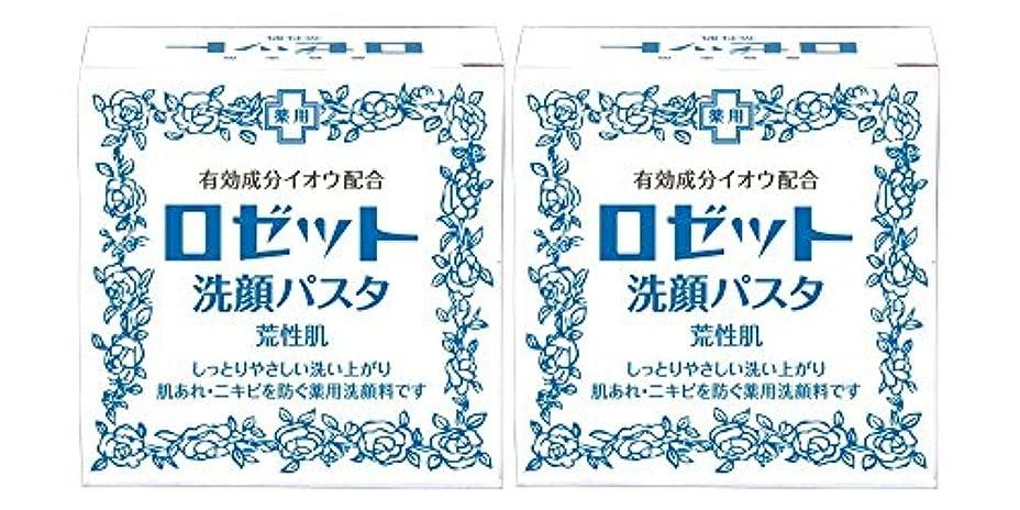 プラス松の木華氏ロゼット洗顔パスタ 荒性肌 90g×2個パック (医薬部外品)