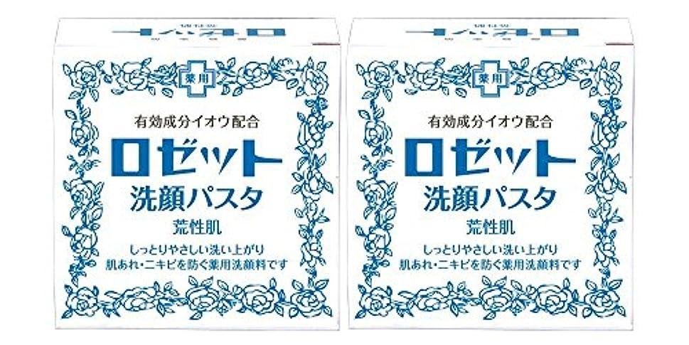 ましい十二盆地ロゼット洗顔パスタ 荒性肌 90g×2個パック (医薬部外品)