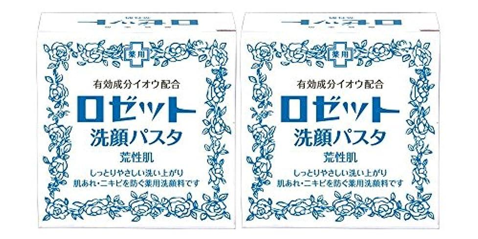 厳しい記憶申し立てられたロゼット洗顔パスタ 荒性肌 90g×2個パック (医薬部外品)