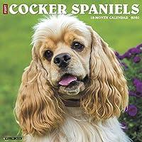 Just Cocker Spaniels 2020 Calendar