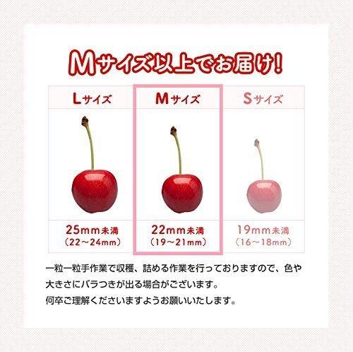 さくらんぼ 佐藤錦 山形県産 約1kg M玉以上 バラ詰め ご自宅用 c1
