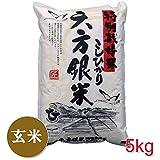 六方銀米 玄米 5kg こしひかり 平成28年産 特別栽培米 コウノトリ舞い降りるお米 兵庫県産