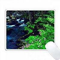 アメリカ、テネシー州、グレートスモーキー山脈、川沿いのワイルドフラワーズ。 PC Mouse Pad パソコン マウスパッド