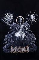 【BEHEMOTH】EVANGELION フィシャル ポスターフラッグ 布ポスター