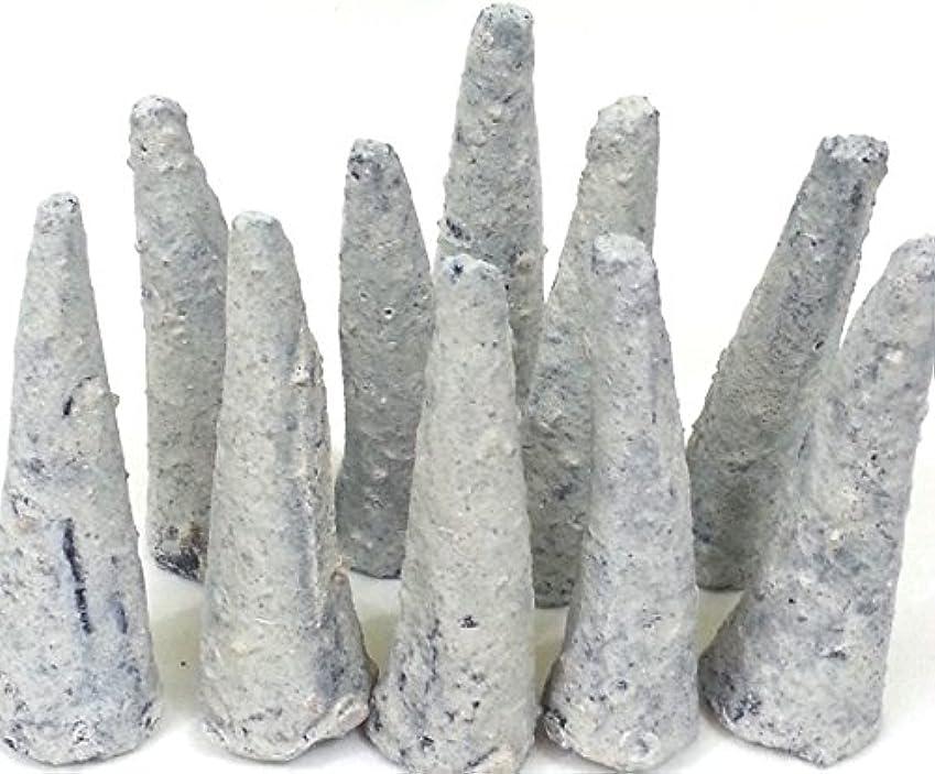 ユニークなばかげた盗難Copal Incense Cones 2バッグ5のコーン各。ハンドメイドのメキシコ。