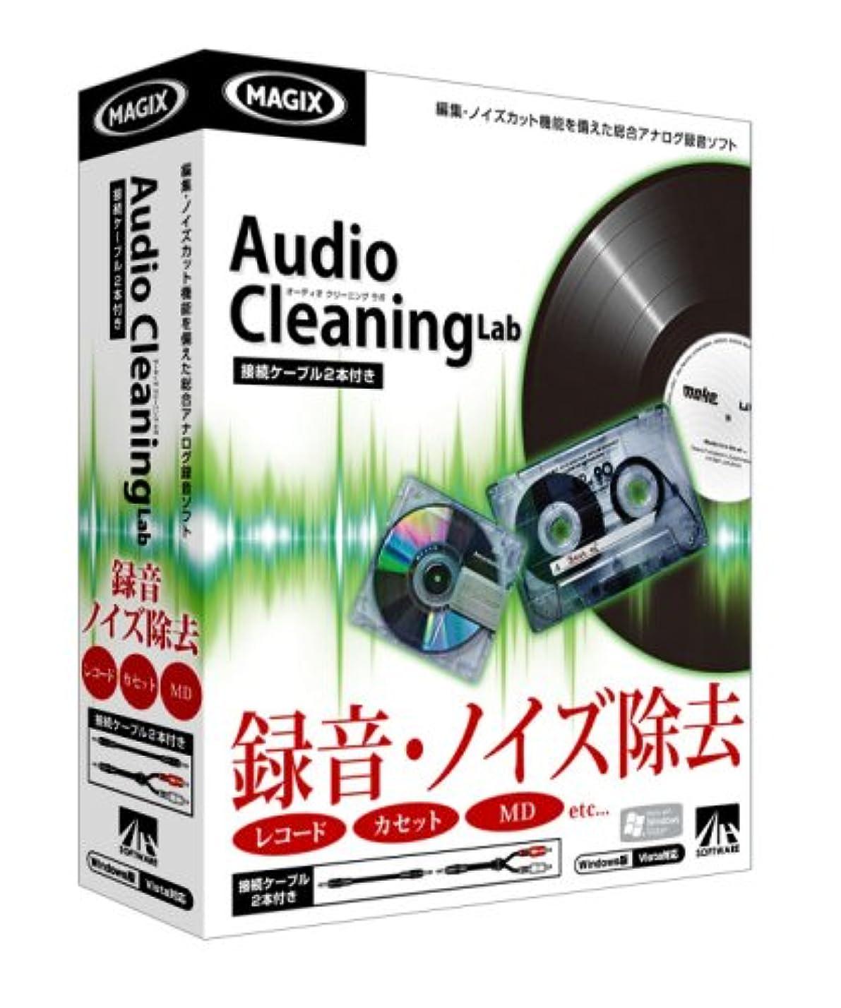 隙間パース分子Audio Cleaning Lab 接続ケーブル2本付き