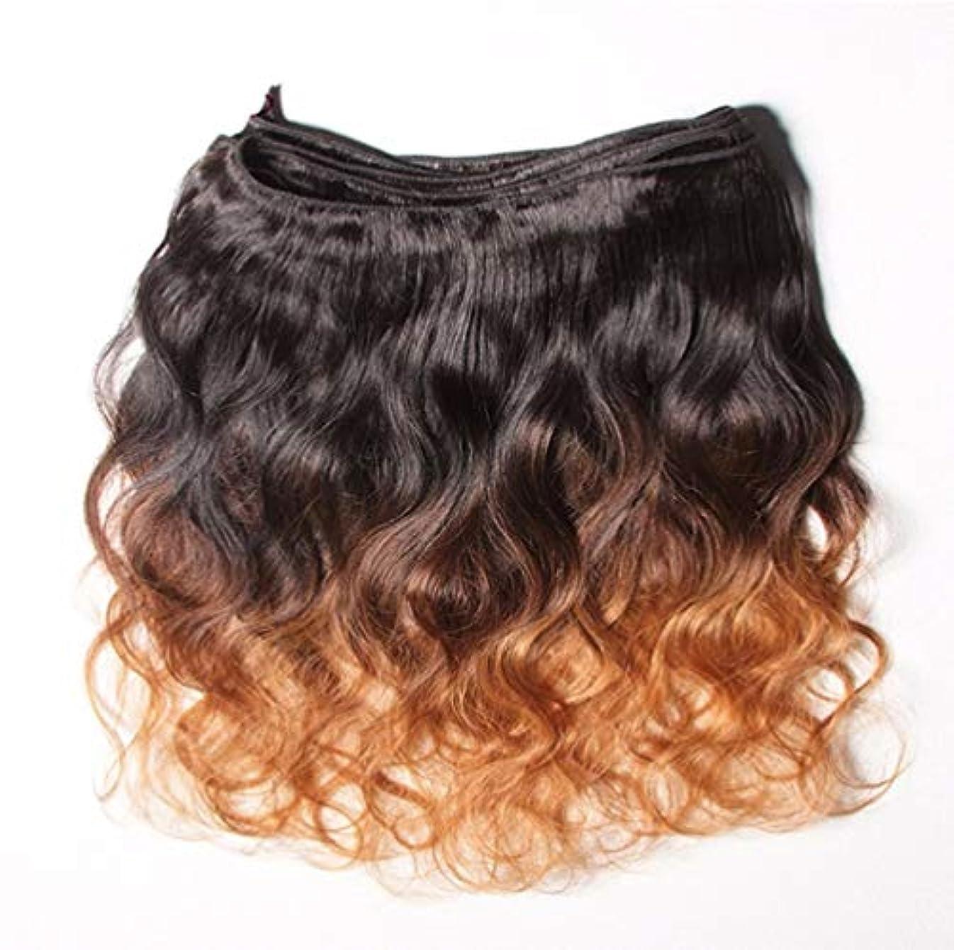 傘静けさ朝食を食べる10Aグレードの髪織りブラジルペルー人毛バージン髪変態カーリーオンブル人間の髪織り(3バンドル)