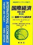 国際経済―理論と政策〈2〉国際マクロ経済学 (新経済学ライブラリ 別巻)