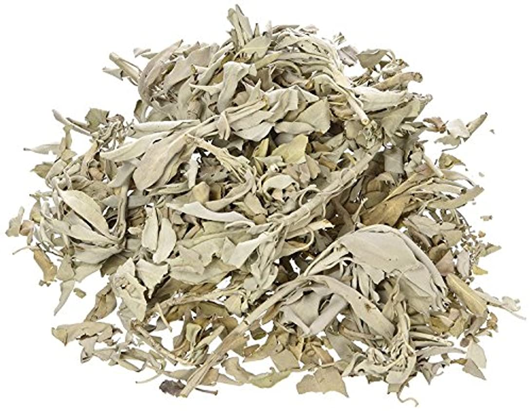 ノベルティ気味の悪いからに変化するカリフォルニアホワイトセージスマッジLooseクラスタリーフ、IncenseバルクDried Leaf、セージSmudgeバンドル(サンプル1 / 2オンスまたは1ポンド) 1 POUND NMRLWSP2