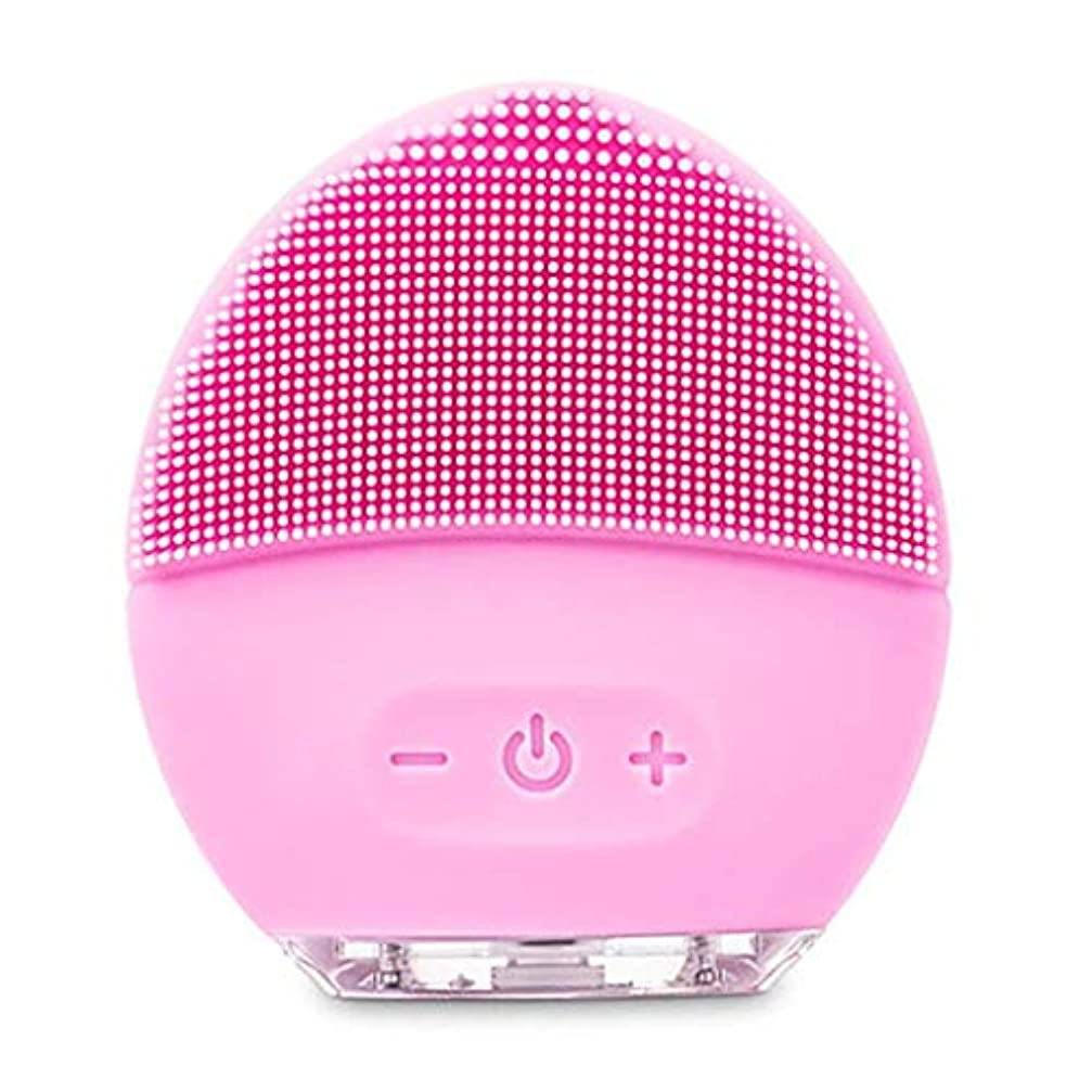 光電均等に鉛クレンジングマッサージ器、電動洗顔ブラシ、シリコーン美顔器、ファーミング肌、アンチエイジングスクラッチクレンザー (Color : ピンク, Size : One size)
