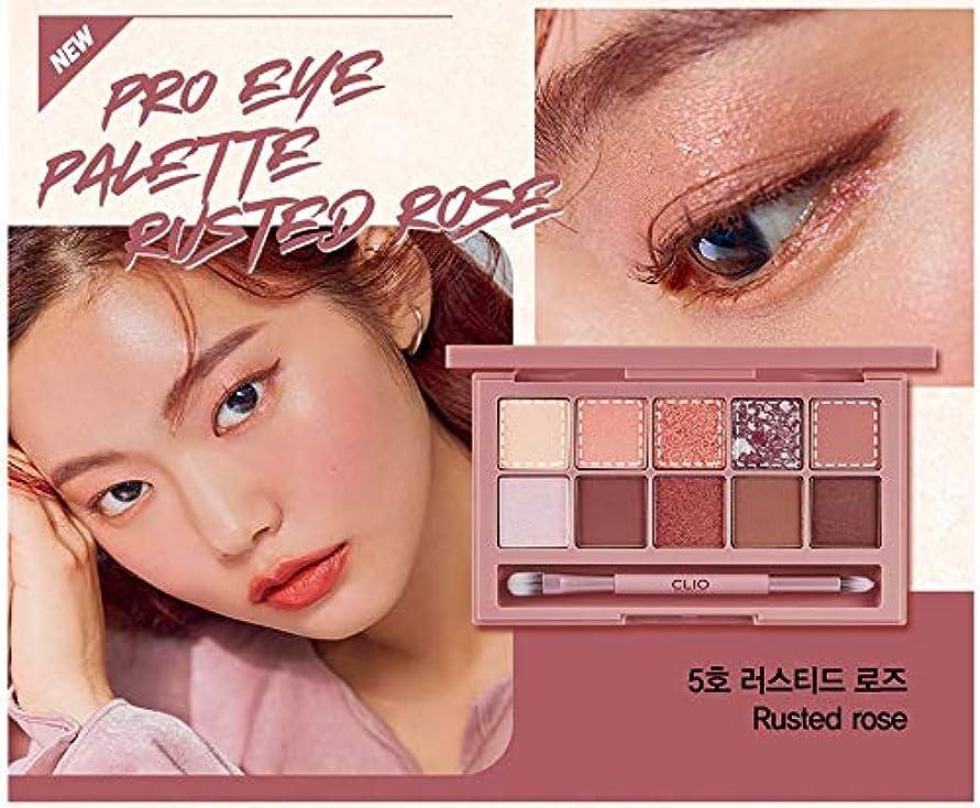 マーティンルーサーキングジュニア滞在疫病クリオ[CLIO] Pro Layering Eye Palette N05 さびたバラ (0.6gx10色) / Pro Layering Eye Palette N05 Rusted Rose