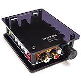 waves TDA7498 高音質 デジタルアンプ 100W+100W 2CH アクリルカバー付き バラック