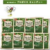 森川健康堂 プロポリスキャンディー 25粒(100g) (#2960) ×10個セット