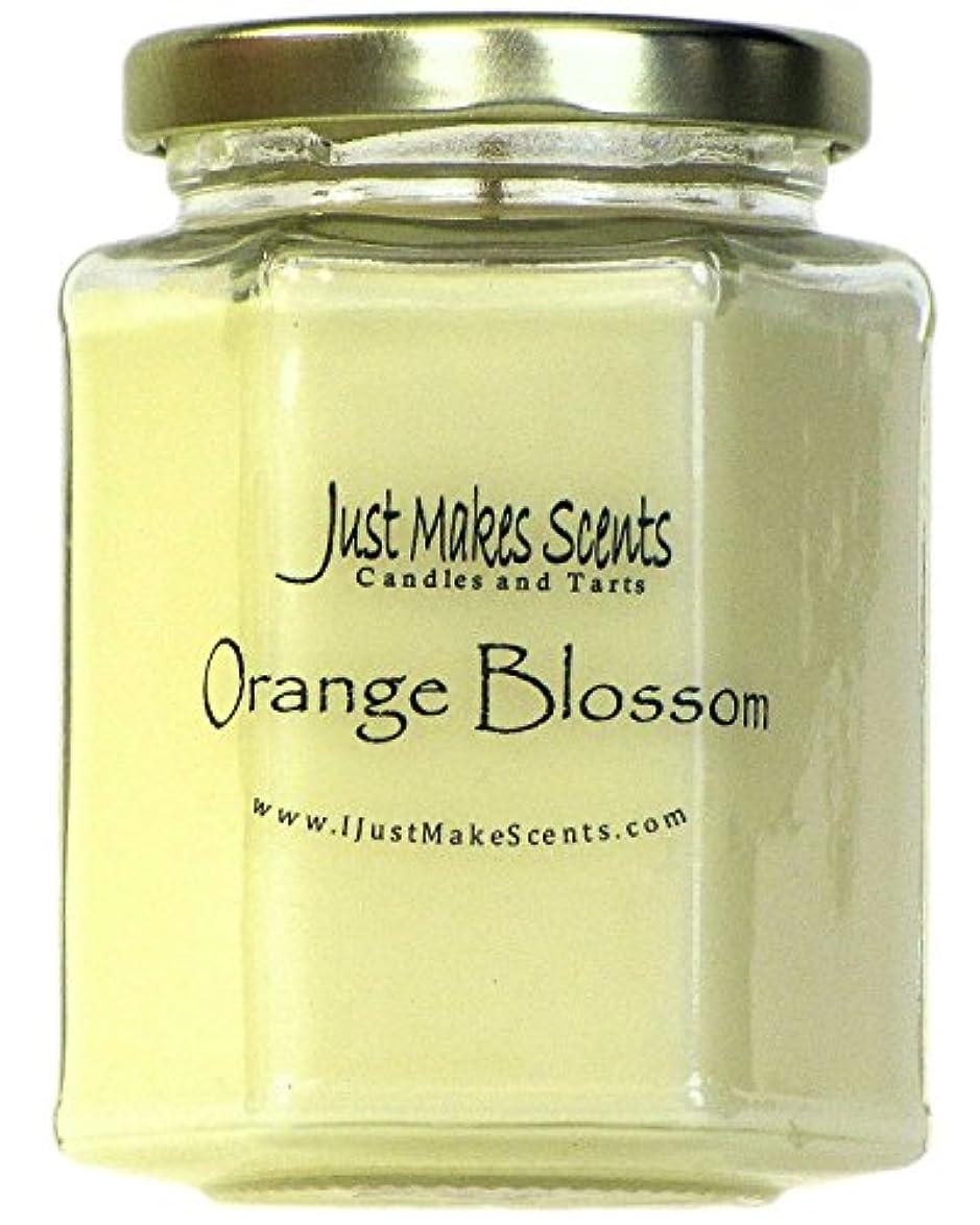 許される毒性可能性(1 Candle) - Orange Blossom Scented Blended Soy Candle Strong Spring Floral Fragrance Hand Poured in the USA by...